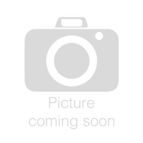 Kampioen van de Verenigde Staten H-WB - Miniatuur rennertjes